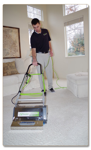 Dry Carpet Cleaning - Dry Organic Carpet Cleaning